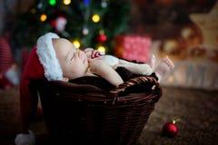 Três meses bonitos do bebê idoso com chapéu do urso em uma cesta, dormindo Fotografia de Stock Royalty Free