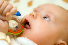 Três meses de infante idoso. Fotografia de Stock Royalty Free