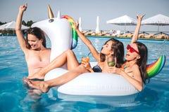 Três modelos lindos estão na piscina Dois deles sentam-se no flutuador dado forma unicórnio Thirl um guarda-o em seu pescoço e imagem de stock royalty free