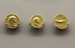 Três moedas douradas de Titus Emperor fotografia de stock royalty free