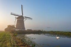 Três moinhos de vento de Molendriegang Leidschendam, Países Baixos durante um nascer do sol enevoado com uma cisne no primeiro pl foto de stock royalty free