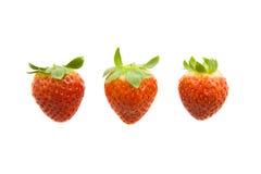 Três morangos Foto de Stock Royalty Free