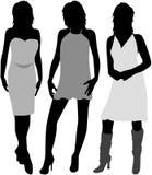 Três mulheres ilustração stock