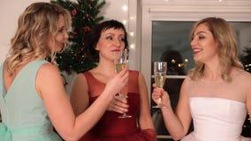 Três mulheres atrativas novas perto da árvore de Natal filme