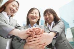 Três mulheres de negócios novas que unem as mãos, opinião de baixo ângulo Imagens de Stock Royalty Free
