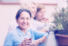 Três mulheres que bebem o chá no balcão Imagem de Stock