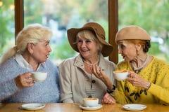 Três mulheres superiores que bebem o café imagens de stock royalty free