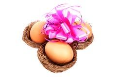 Três ninhos dos pássaros com um ovo da páscoa Foto de Stock Royalty Free