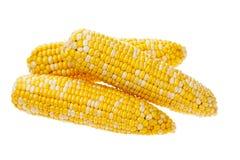Três orelhas de milho Fotografia de Stock Royalty Free