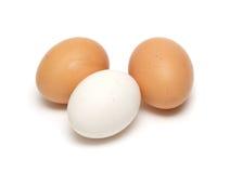 Três ovos fotos de stock