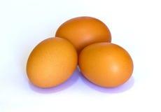 Três ovos Fotos de Stock Royalty Free