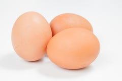 Três ovos da galinha em um fundo branco Fotografia de Stock Royalty Free
