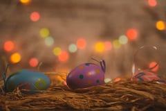 Três ovos da páscoa coloridos na cama da palha imagem de stock royalty free