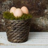 Três ovos da páscoa em uma cesta do musgo, conceito feliz de easter, fundo retro da Páscoa Foto de Stock