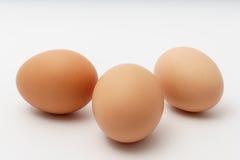 Três ovos em um fundo branco Imagem de Stock