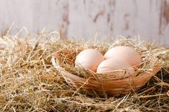 Três ovos em um ninho da palha Foto de Stock