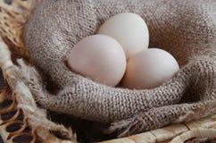 Três ovos frescos encontram-se em um guardanapo bege em uma cesta imagem de stock royalty free