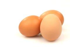 Três ovos marrons Imagem de Stock Royalty Free