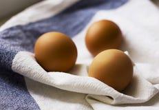 Três ovos marrons da galinha em uma toalha de prato branca Imagem de Stock Royalty Free