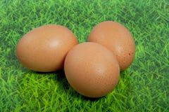 Três ovos marrons em um gramado verde imagem de stock royalty free