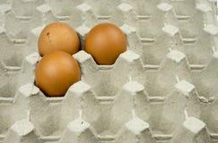 Três ovos na bandeja de papel Foto de Stock Royalty Free