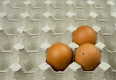 Três ovos na bandeja de papel Imagens de Stock