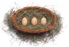 Três ovos orgânicos em uma cesta de vime no feno Foto de Stock