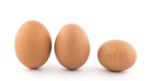 Três ovos orgânicos marrons da galinha foto de stock