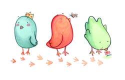 Três pássaros ilustração royalty free