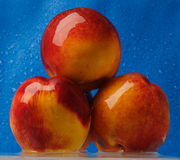 Três pêssegos molhados Fotos de Stock Royalty Free