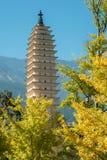Três pagodes em Dali, China Imagens de Stock Royalty Free
