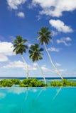 Três palmas de coco por uma piscina Imagem de Stock Royalty Free
