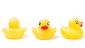 Três patos de borracha amarelos Imagens de Stock
