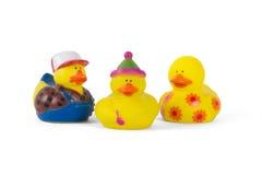 Três patos de borracha coloridos Foto de Stock