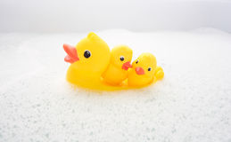 Três patos de borracha na água da espuma Imagens de Stock