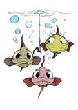 Três peixes engraçados Fotos de Stock