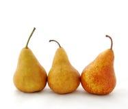 Três peras de Bosc fotografia de stock royalty free