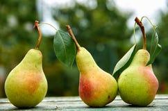 Três peras verdes com as folhas no marrom verde de madeira envelheceram o fim da tabela da textura acima Peras no fundo borrado d Imagens de Stock
