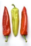 Três pimentas fotos de stock
