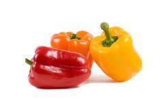 Três pimentas da paprika isoladas no branco imagem de stock