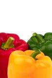 Três pimentas de sino - vermelhas, amarelas e verdes imagem de stock royalty free