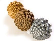 Três Pinecone Fotografia de Stock Royalty Free