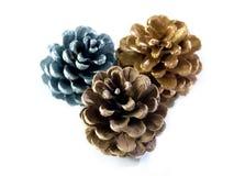 Três Pinecone Imagem de Stock