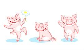 Três porcos ilustração do vetor