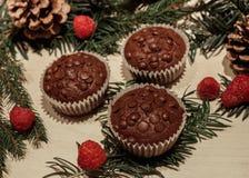 Três queques dos pedaços de chocolate e algumas framboesas fotografia de stock
