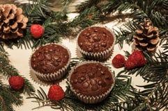 Três queques dos pedaços de chocolate e algumas framboesas fotos de stock
