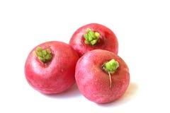 Três radishes Fotos de Stock