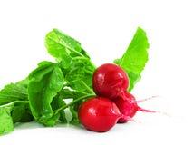 Três radishes vermelhos Fotos de Stock