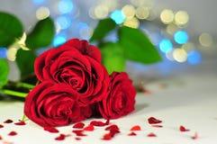 Três rosas entre corações pequenos no fundo das luzes Imagem de Stock