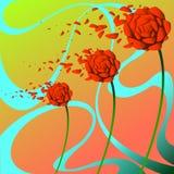 Três rosas no vento Fotos de Stock Royalty Free